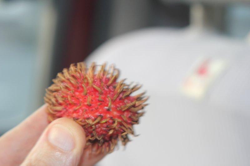spikey fruit