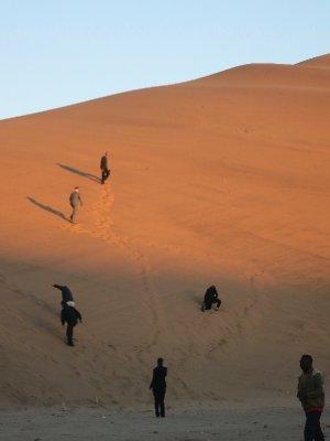 Namibia -climbing dunes