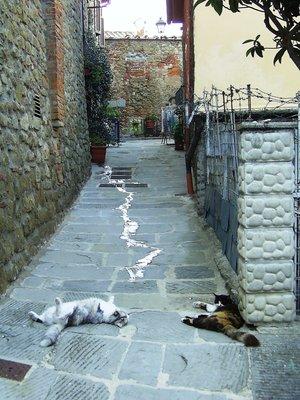 Castiglion Fiorentino, Tuscany