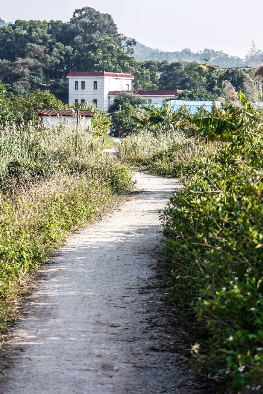 Qi'Ao path at the end of the levee
