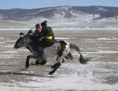 Horse race on ice