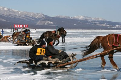 Start of the horse and sled race