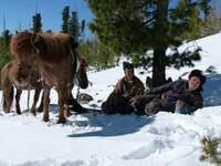 Intrepid horsemen