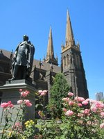 Cathedral - Adelaide