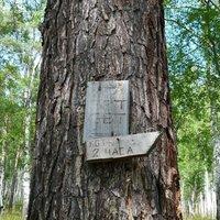 Sign to Bolshiye Koty