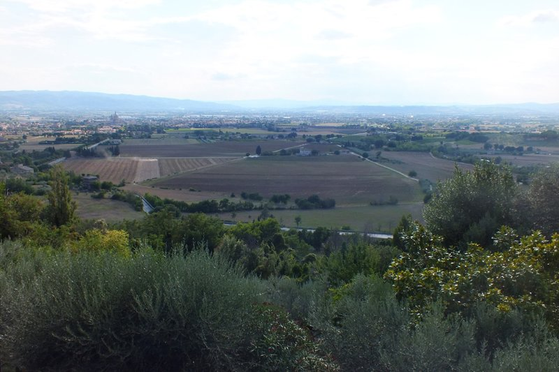 view from front of Assisi