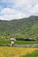 The Field Bukittinggi