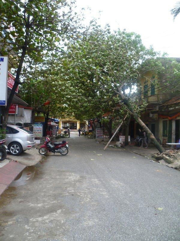 Resultaat van de Tyfoon