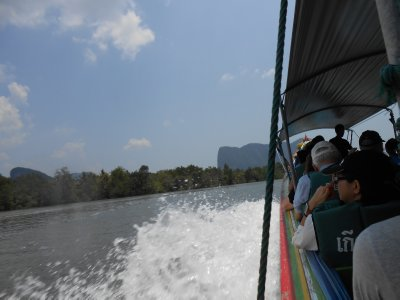 """Mangrove tour"" - where is the mangrove?  It's on the left, just!"