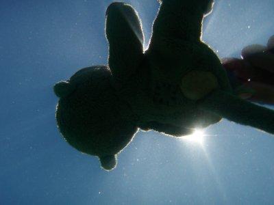 Patch having fun underwater on Koh Lanta!