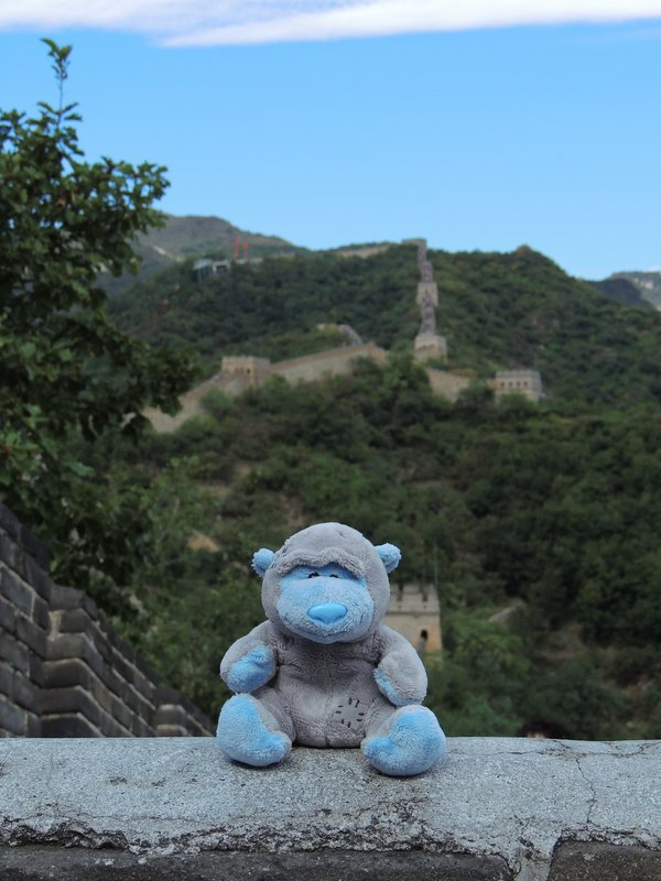 Patch at the Great Wall