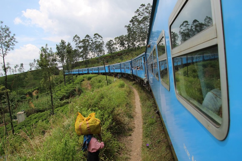 Tea Pickers and the Kandy to Ella Train