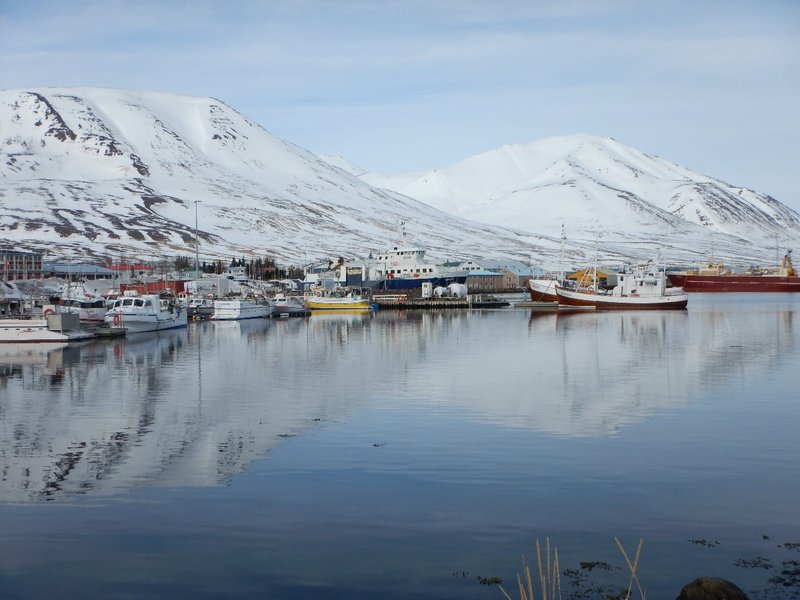 Reflections in the Harbour in Dalvik