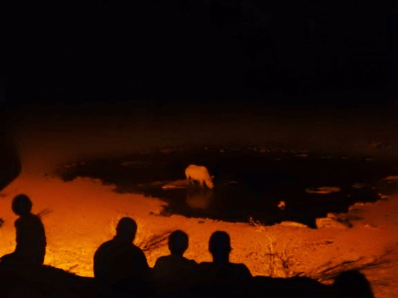 Halali Waterhole by night