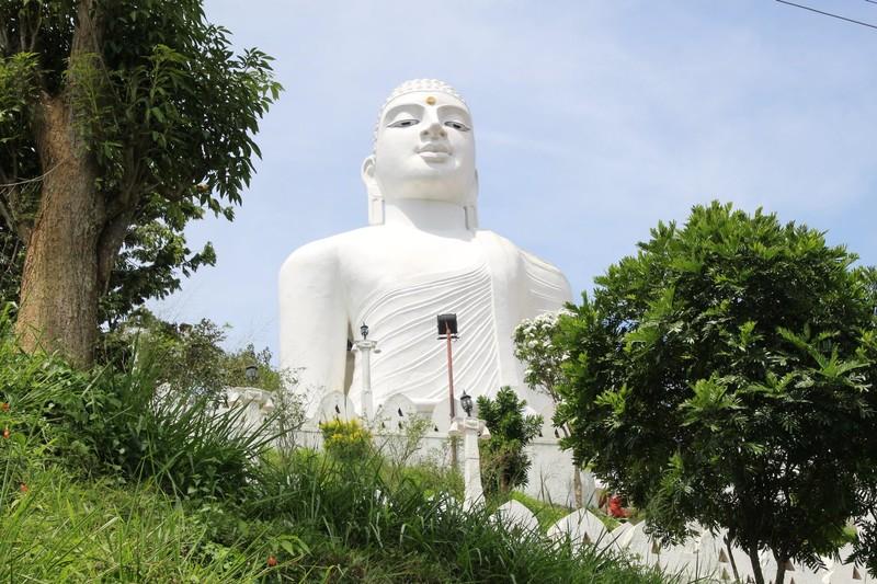 The White Buddha