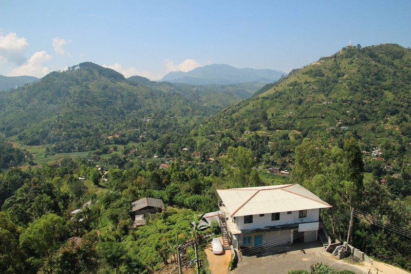 View from the Halpewatte Tea Factory