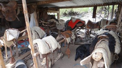 Gaucho Tack shop