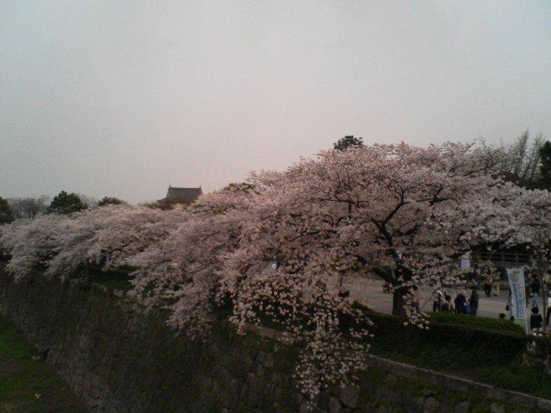 Osaka Castle Walkway (2)