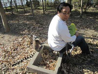 blogShanghai0044