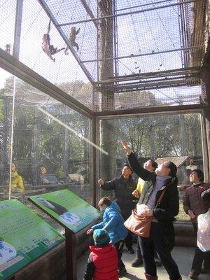blogShanghai0035