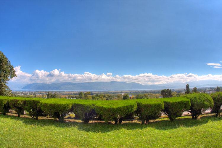 Dali Landscape