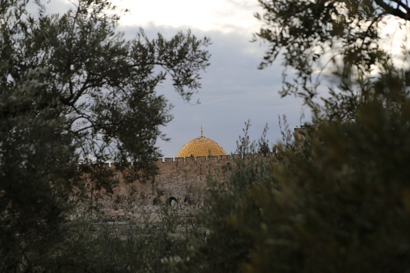 Temple Mount from Gethsemane