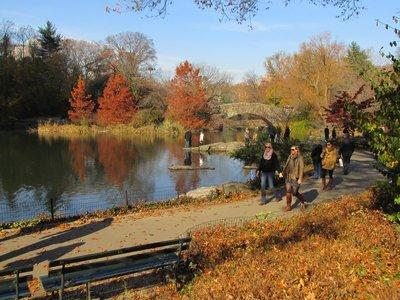 Herbstlicher Central Park, NYC
