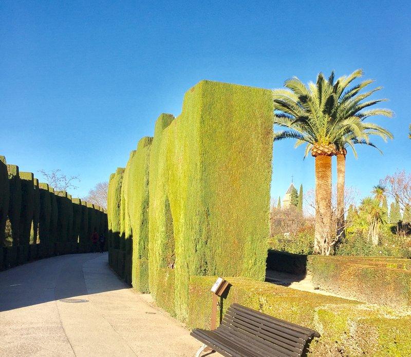 Living Wall Alahambra Granada Spain