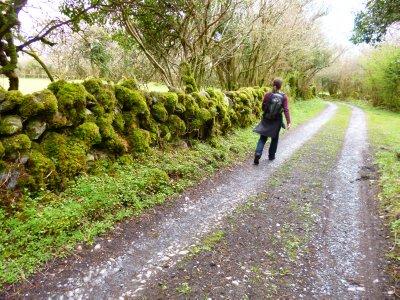 Hiking on the Edge of The Burren