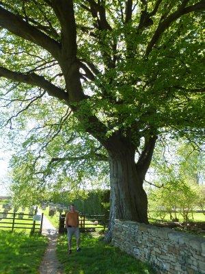 Churchyard in Bledington