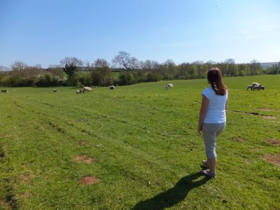 Walking the Pastures Around Bledington