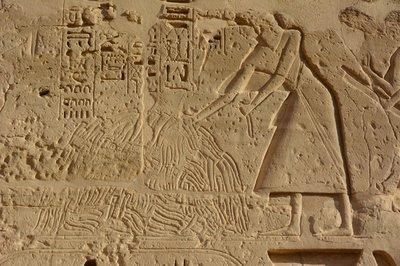 Egypte--Luxor-Medinat Habu tempel-pikkenoogst
