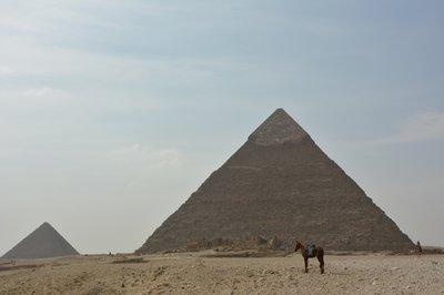 Egypte--Pyramides Giza
