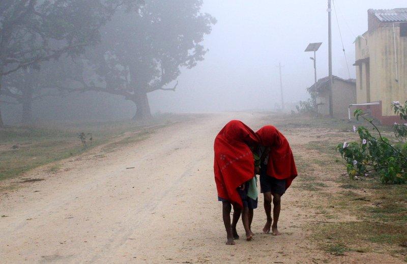 Fog to Winter