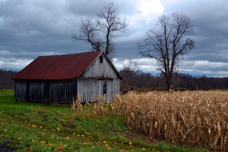 October On The Farm