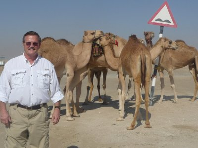 Camel crossing!