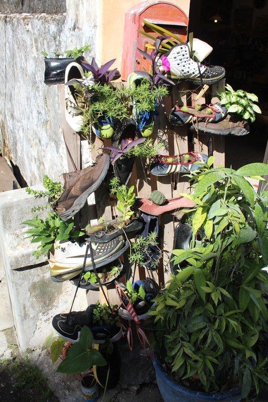 Shoe flower pots