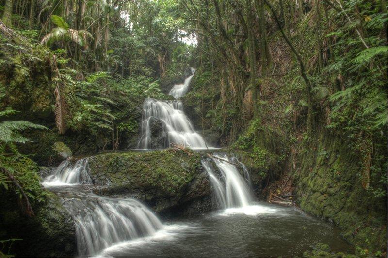 Onomea Falls