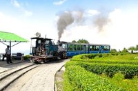 Toy Train - a heritage