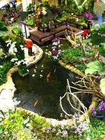 The Orchid Garden, Singapore Airport