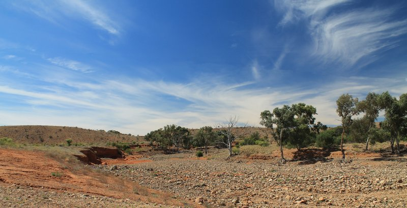 Dry River Bed, Mundi Mundi Plain, near Broken Hill, New South Wales