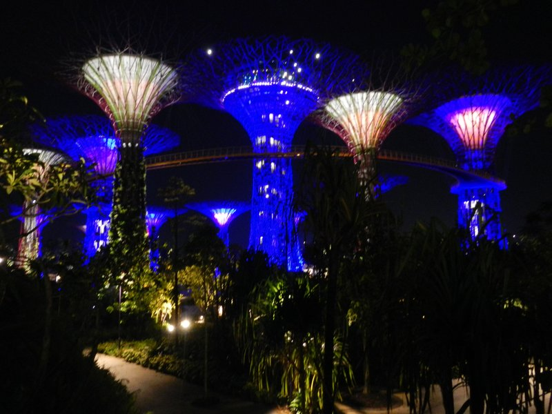 large_Singapore_199.jpg