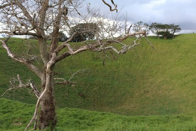 The crater of Mt Eden