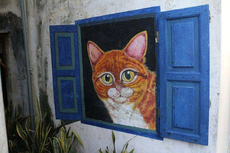 Street Art Cat