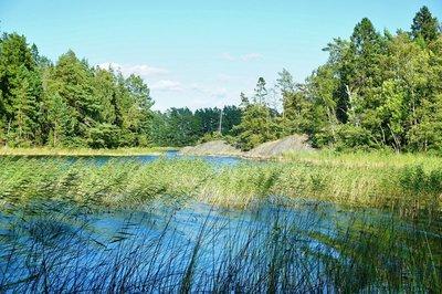 Lake on Gallno