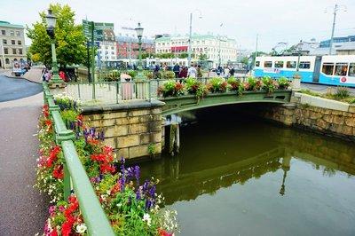 Floral bridges