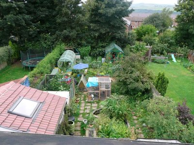 Claire_Gre..ture_garden.jpg