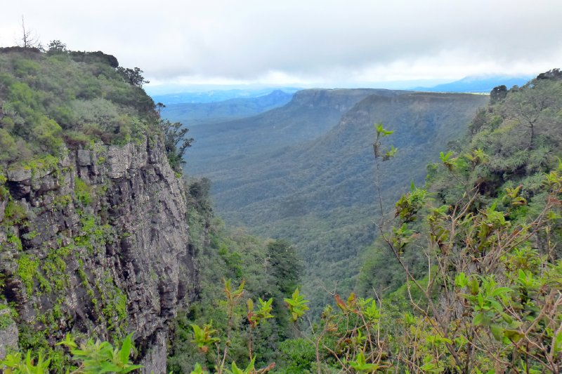 Gods Window - Blyde River Canyon