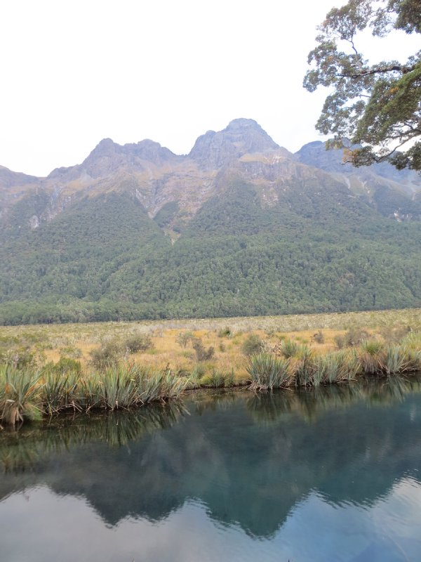 Journey to Milford Sound 7