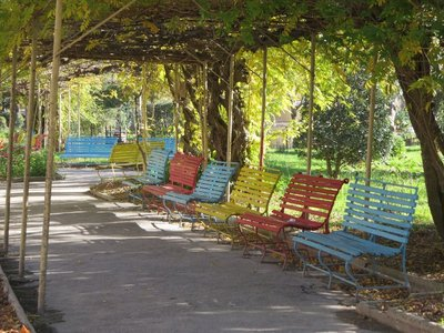 Shady benches in a park